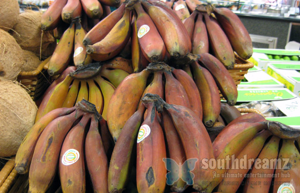 not so red bananas Banana   The alltime favorite and affordable fruit.