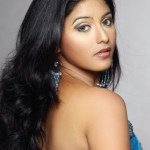 Anjali turns to do glamour role in Maharaja