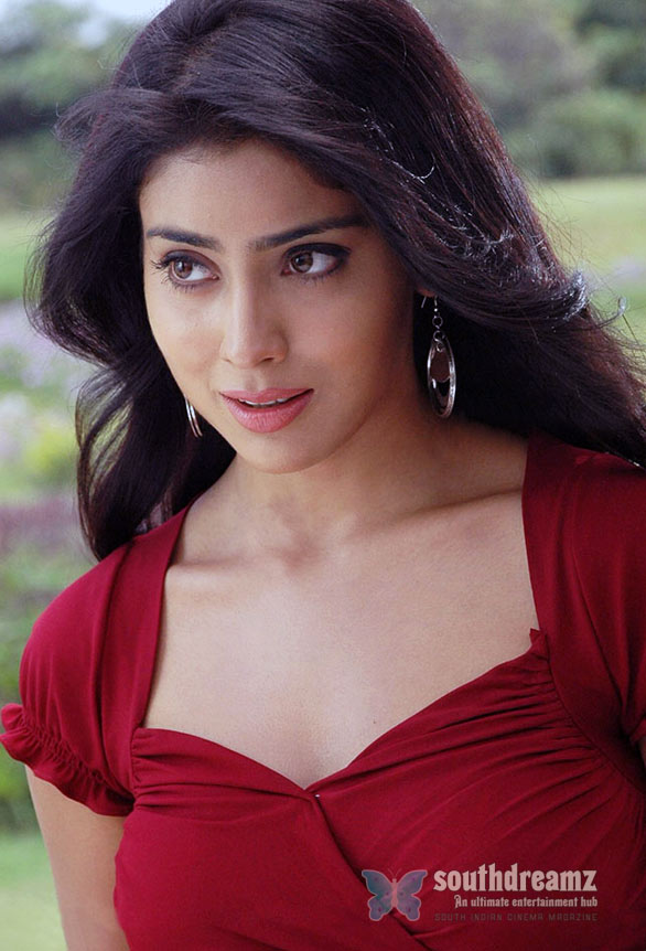shriya saran hot images 5 Stunning beauty lost her baggage in Chennai Airport