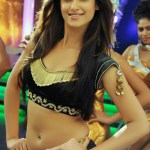 ileana-hot-in-shakti-telugu-movie