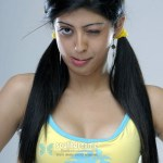 telugu_actress_pranitha_hot_stills_pics_08