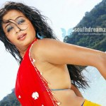 Priyamani back on track