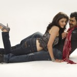 Karthi's most wanted heroine in All-in-All Azhaguraja
