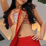 Trisha-Hot-in-Dammu-Stills-1