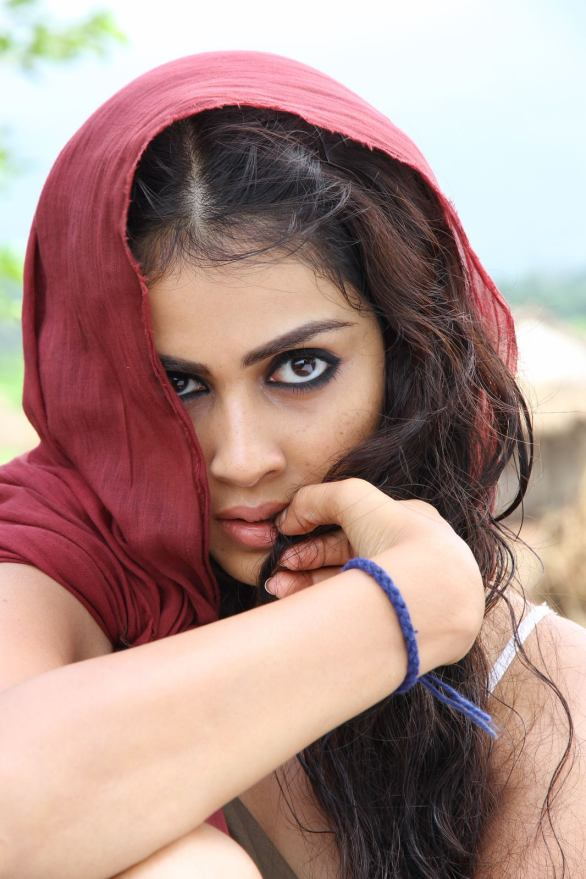 genelia hot 586x879 Top 10 South Actresses in Bollywood