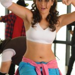 Sonakshi Sinha's item and Tamanna's lead act