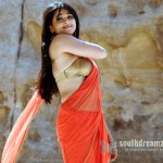 anushka-shetty-sexy-saree-naval-stills-28