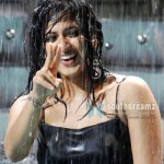 Sweety Anushka in 3D Film