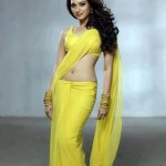 tamanna-hot-saree-photo