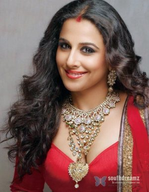 bollywood-actress-vidya-balan-sexy-saree-photo-3