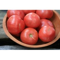 Small Crop Of Arkansas Traveler Tomato