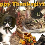thanksgiving_kitties_by_digitaldoodledesigns-d4gq4ch