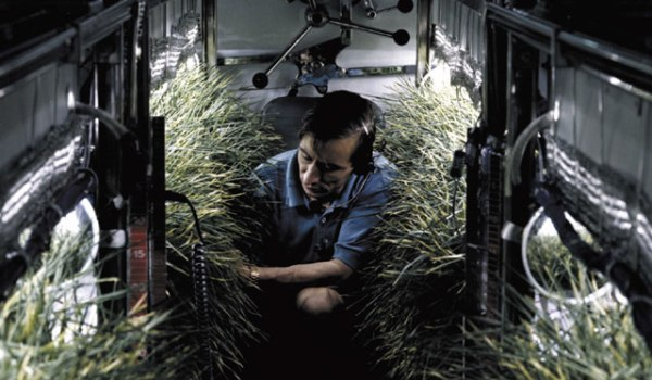Researcher at NASA Johnson Space Center studies oxygen producing plants (Credits: NASA).