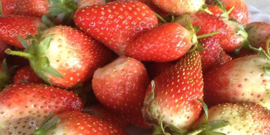 Strawberries letterbox