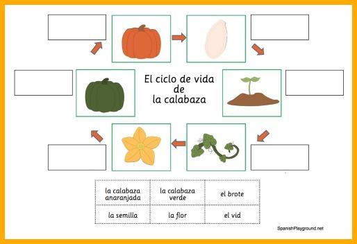 Pumpkin Activities in Spanish - Spanish Playground