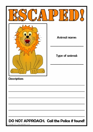 Lost Animal Poster Writing Frames  Printable Page Borders KS1  KS2 - lost poster template