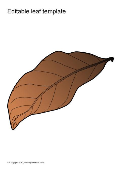 Editable Leaf Templates (SB7207) - SparkleBox - leaf template