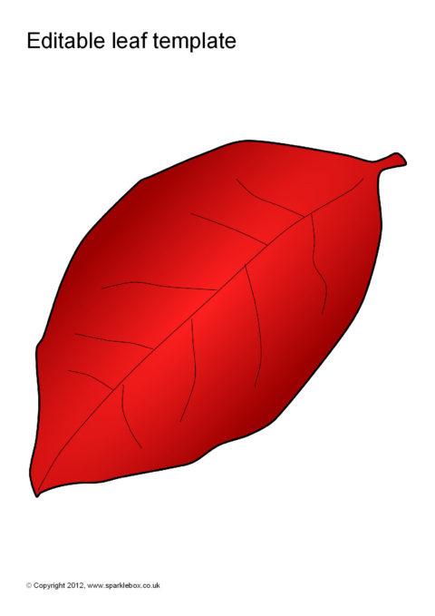 Editable Leaf Templates (SB7207) - SparkleBox
