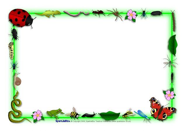 Minibeast Themed A4 Page Borders Sb3884 Sparklebox