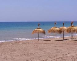 San Pedro Area Guide - Property Management in Marbella