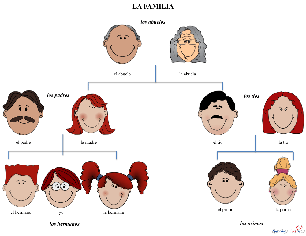 Basic Family Vocabulary In Spanish Free Image Printable