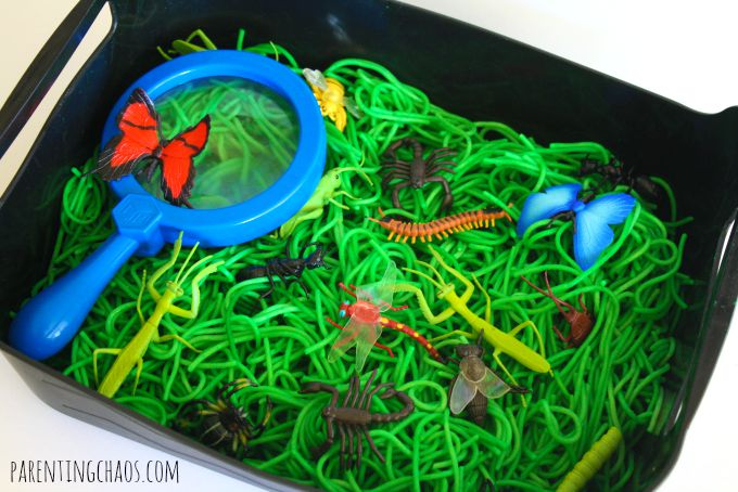 Sensory box ideas for kids with autism. Insect sensory play for kids. | speciallearninghouse.com