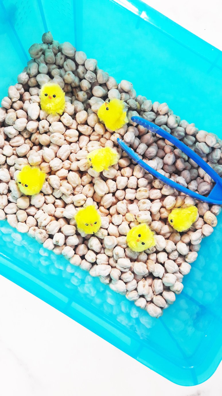 Sensory box ideas for kids with autism. Spring chicks. Perfect Easter activity for kids. | speciallearninghouse.com