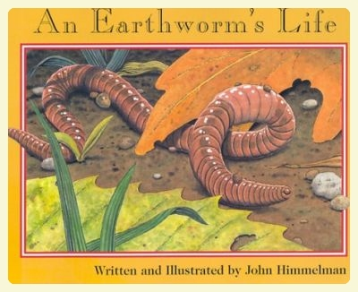 An Earthworm's Life by John Kimmelman. Featured by Special Learning House. www.speciallearninghouse.com.