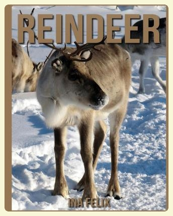 Reindeer. Montessori-friendly books selection. Featured by Special Learning House. www.speciallearninghouse.com.