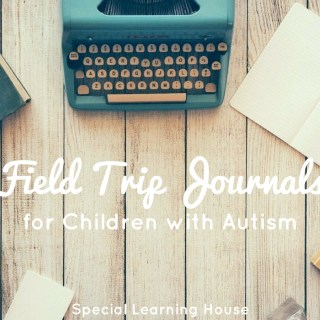 Field trip journals for autistic children