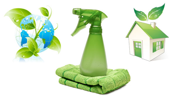 Royal Service Guaranteed! - Special Touch Housekeeping - pictures cleaning