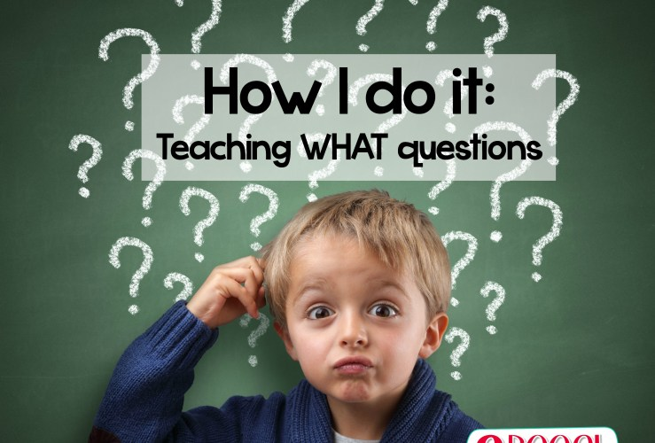 How I do it: Teaching what questions