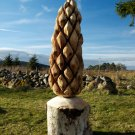 Large pinecone carved in spruce
