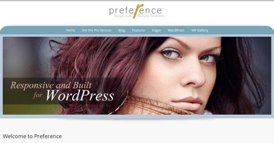 preference free wordpress theme 2013 10 Best Free WordPress Themes for 2013 March