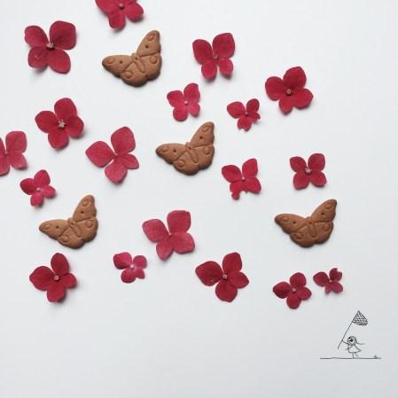 butterflies g
