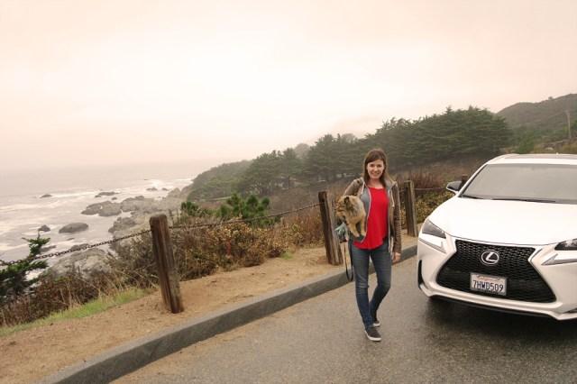 Walk-to-Lexus