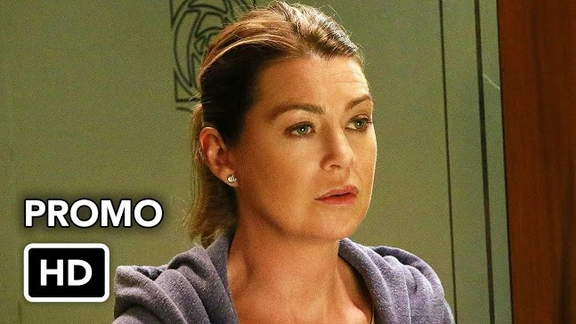 greys-anatomy-season-13-promo