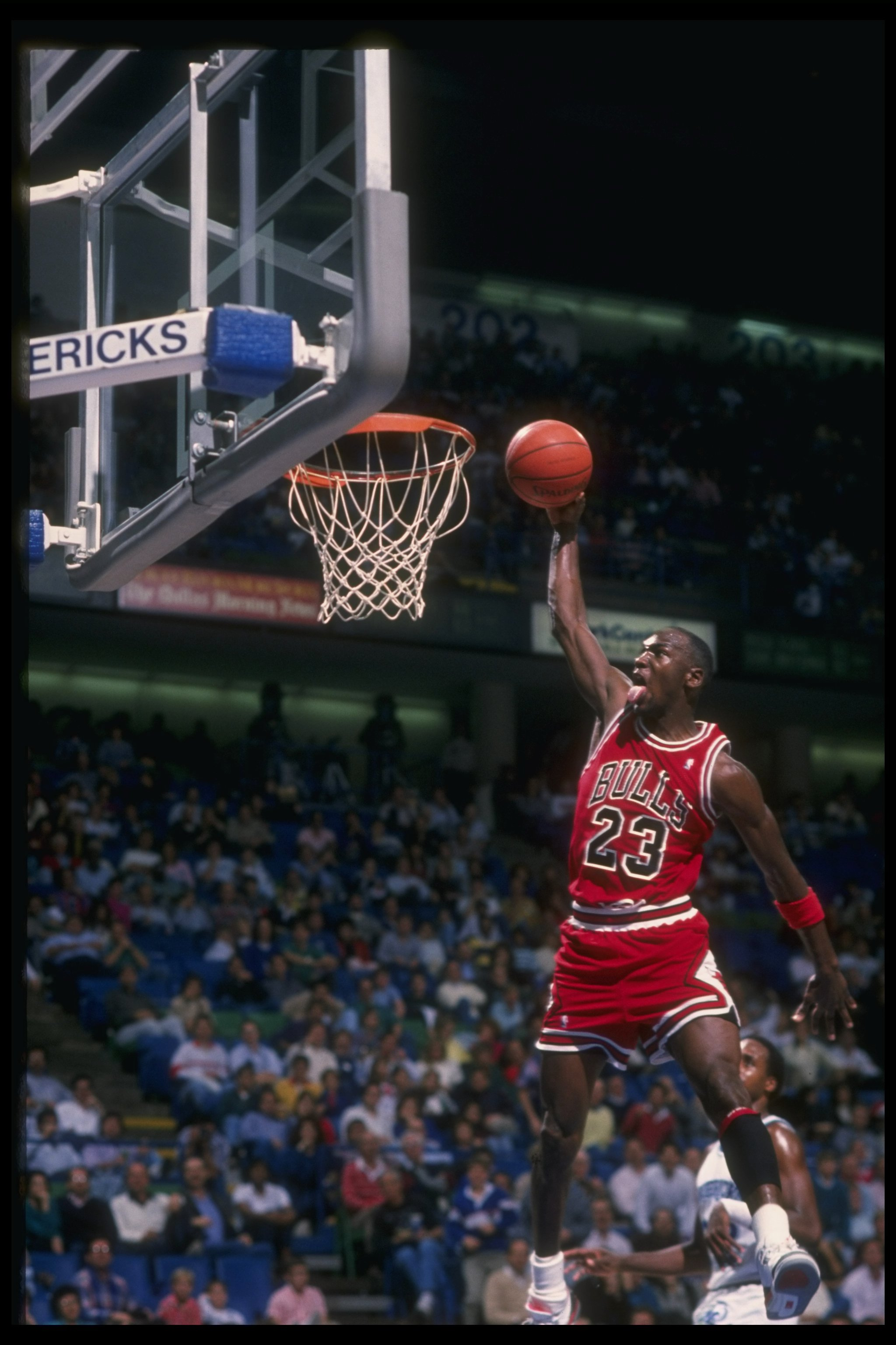 Tennis Players Hd Wallpapers From Larry Bird To Magic Johnson Michael Jordan And
