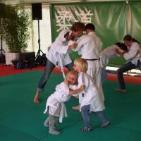 Judoclinic Sportboekingen