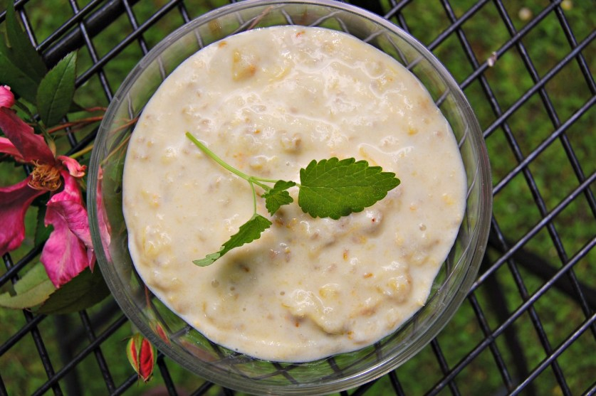 Healthy elderflower and gooseberry fool from above Sporty over Forty Patricia Carswell