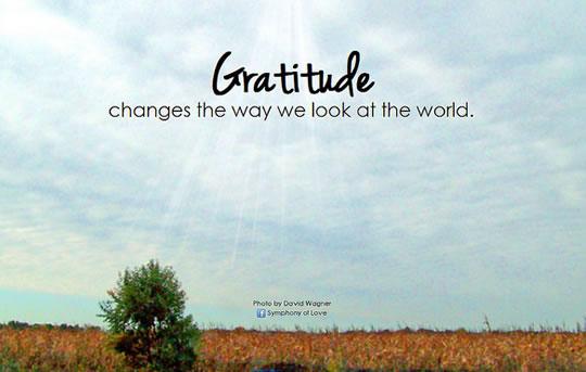 Self Motivation Quotes Wallpaper 10 Ways Gratitude Can Change Your Life Amp 4 Step Gratitude
