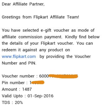 flipkart earning august 2015