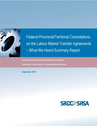 Federal-Provincial/Territorial Consultations on the Labour Market