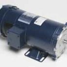 Leeson electric motor Catalog 128010.00 Model C145D17FK3 2HP 1750 RPM 145TC Frame 180VDC