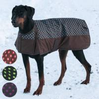 Dura-Tech Polka Dot Insulated Waterproof Dog Coat in Dog ...