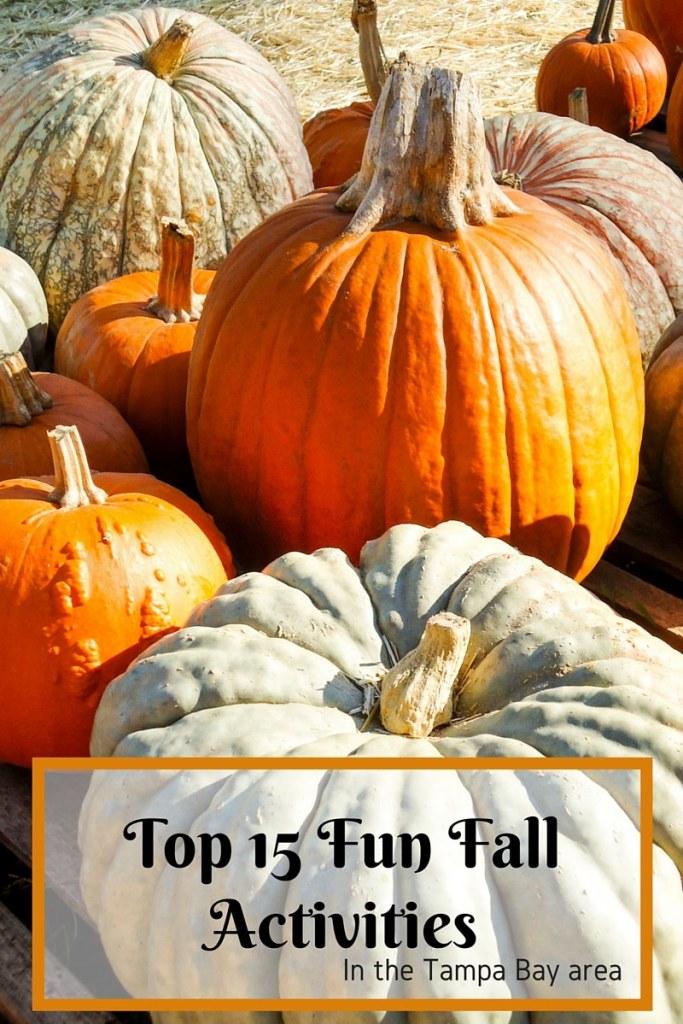 Top 15 Fun Fall activities
