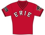 Youth_Jersey_Promo - Eerie Seawolves - Tigers