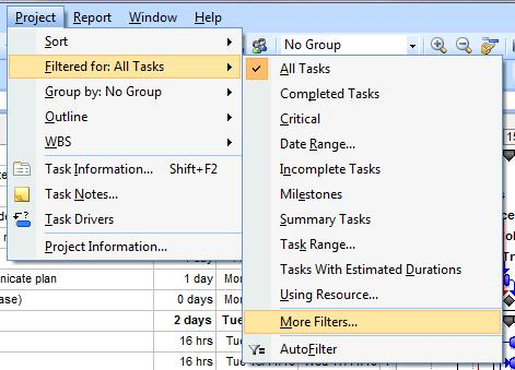 MS Project Filters - using filters in microsoft project