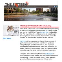 "Thank you ""The FIFTEEN DOWNTOWN DALLAS!"""