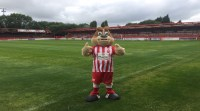 Vacancy: Winstanley the Mascot